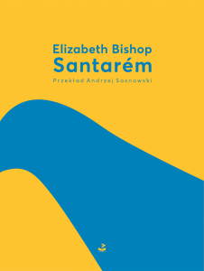 ebook Santarém
