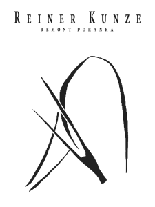 ebook remont poranka